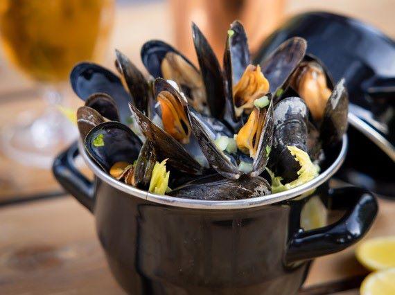 Mussels & Hops